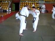 Hyoli No Kata, Nihon Tai Jitsu